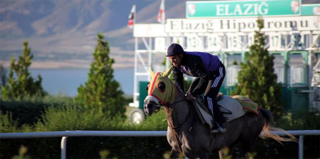 Elazığ'da yılda 26 yarış yapılıyor