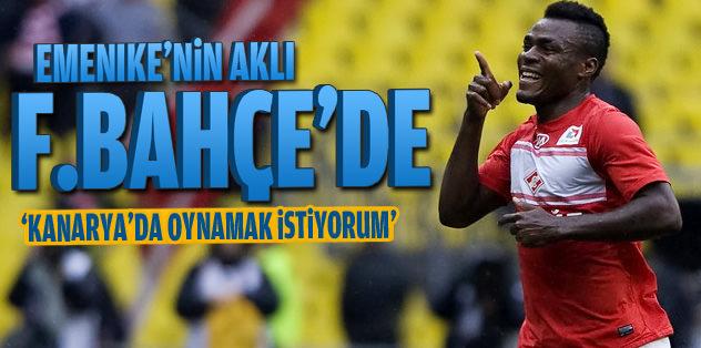 Emenike'nin aklı Fenerbahçe'de
