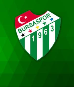 Bursaspor, göğüs reklamını buldu