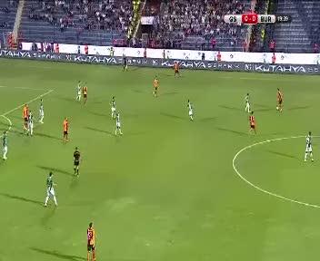 Sneijder ve Mert devleşti